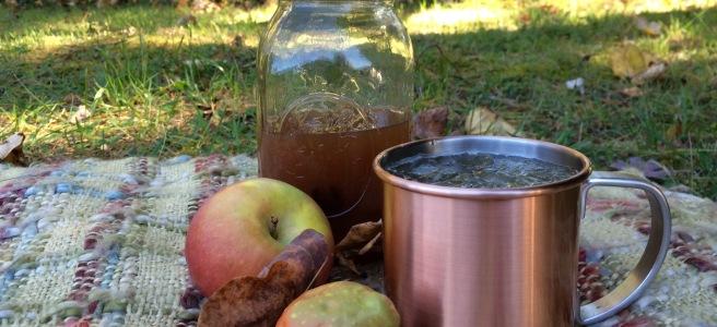 All Hallows' Hooch - Apple Cider, Moonshine, and Ginger Beer Cocktail